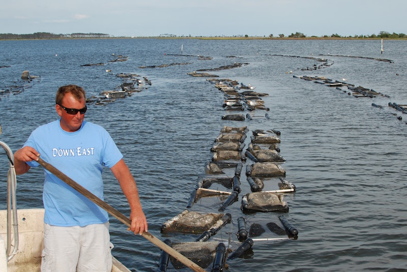 Adam Tyler, grower of Core Sounder Oysters