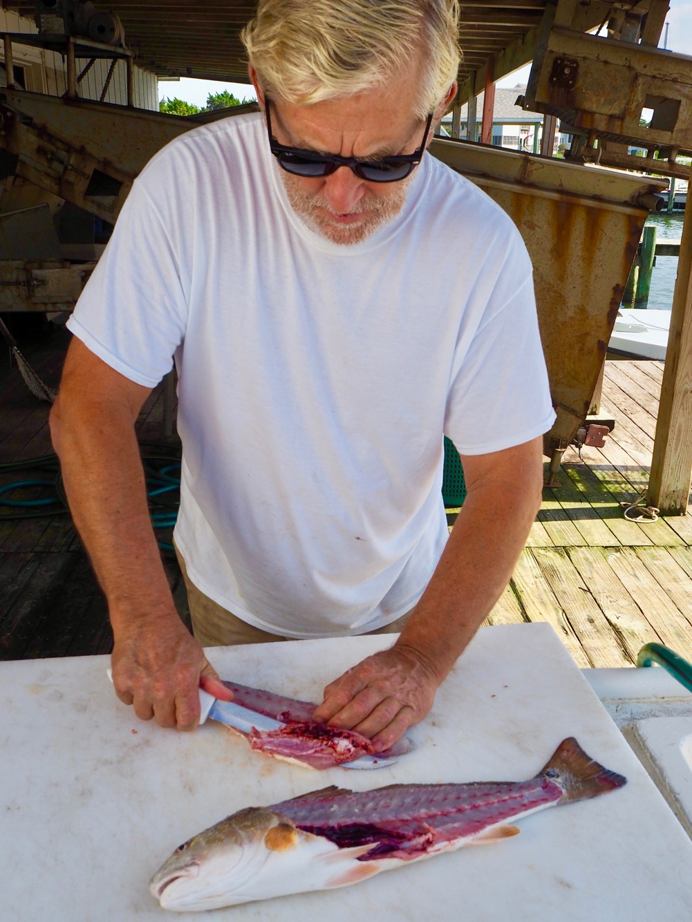 Hardy P. breaks down a Red Drum fish