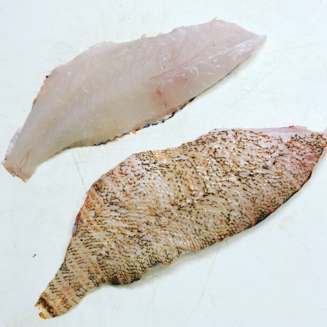 North Carolin Lionfish Fillets