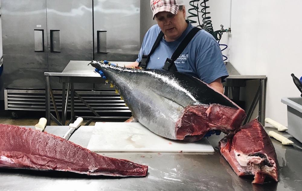 Mish cuts a yellowfin tuna