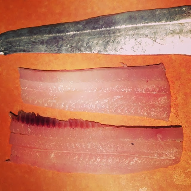 Ribbonfish fillets